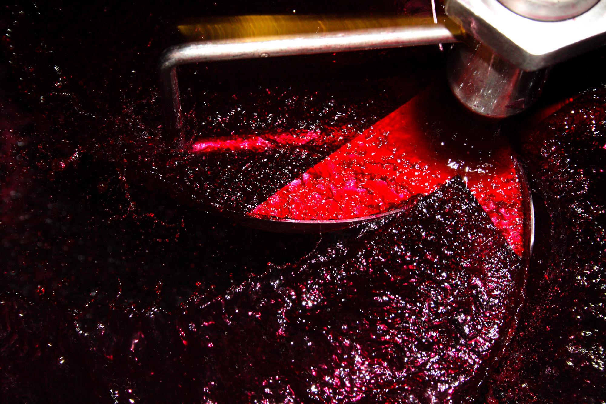 winemaking-12.jpg