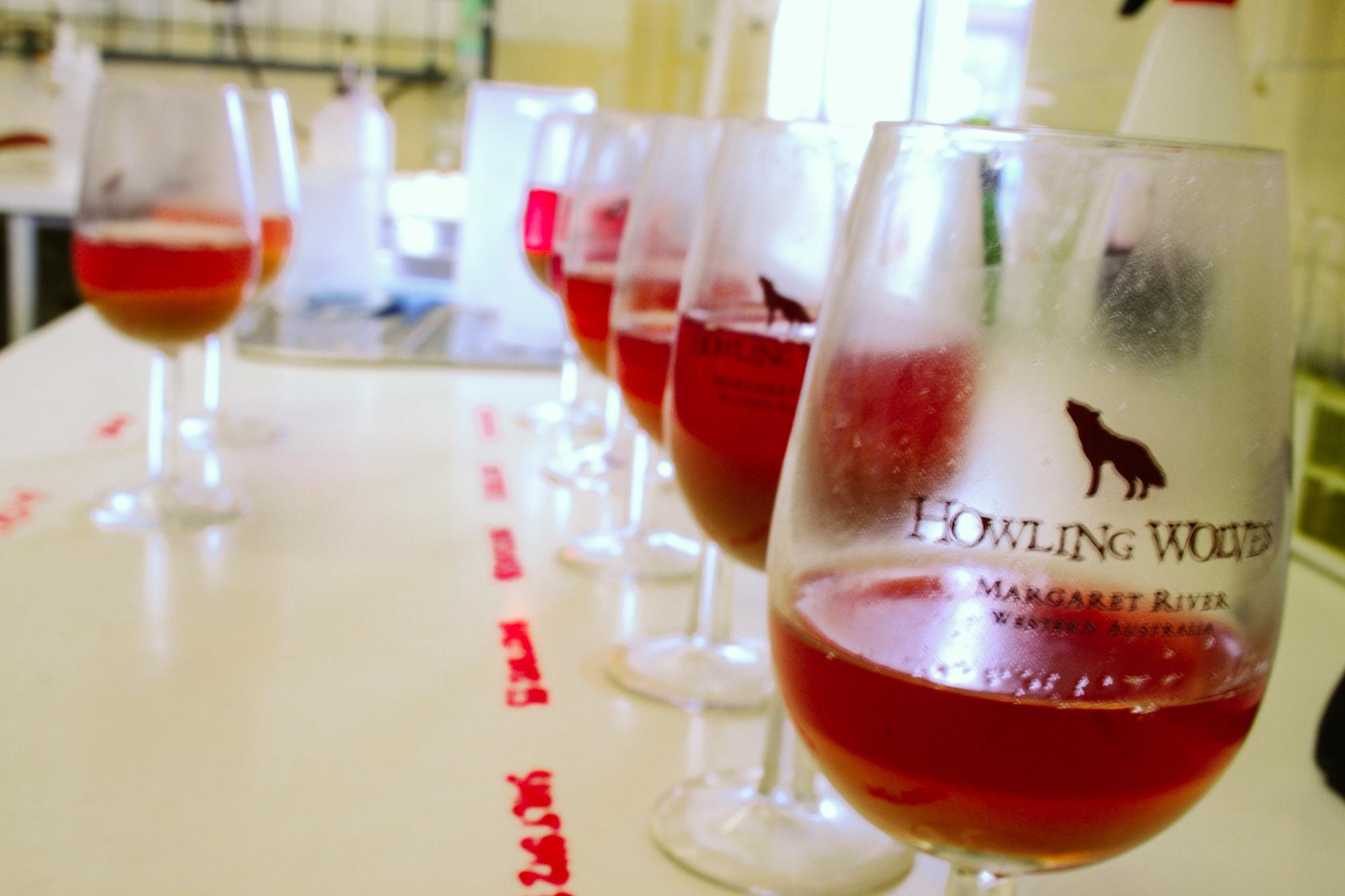 winemaking-13.jpg
