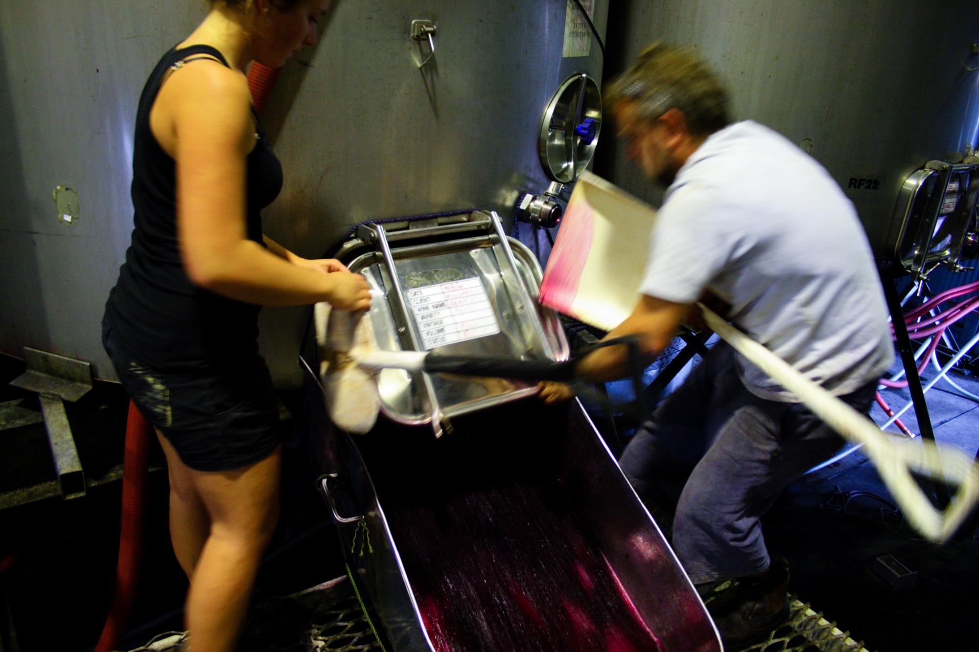 winemaking-29.jpg