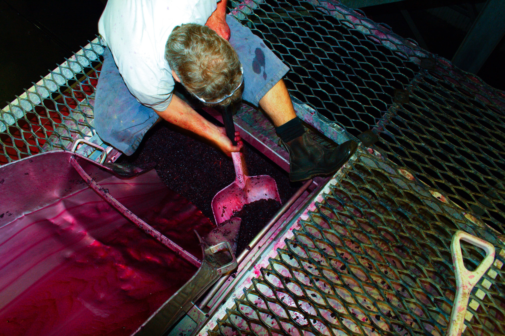 winemaking-31.jpg