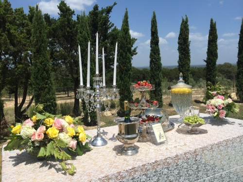 This lovely table was set out near the outdoor ceremony site showing how guests would be treated to champagne and strawberries either right before or after the wedding ceremony. Great idea!