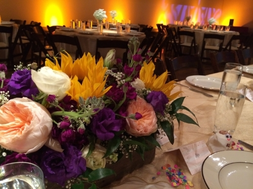 Venue Feature: The McNay Art Museum