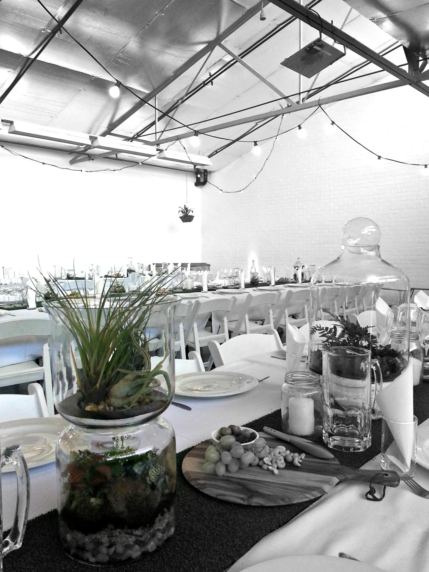 melbourne terrariums