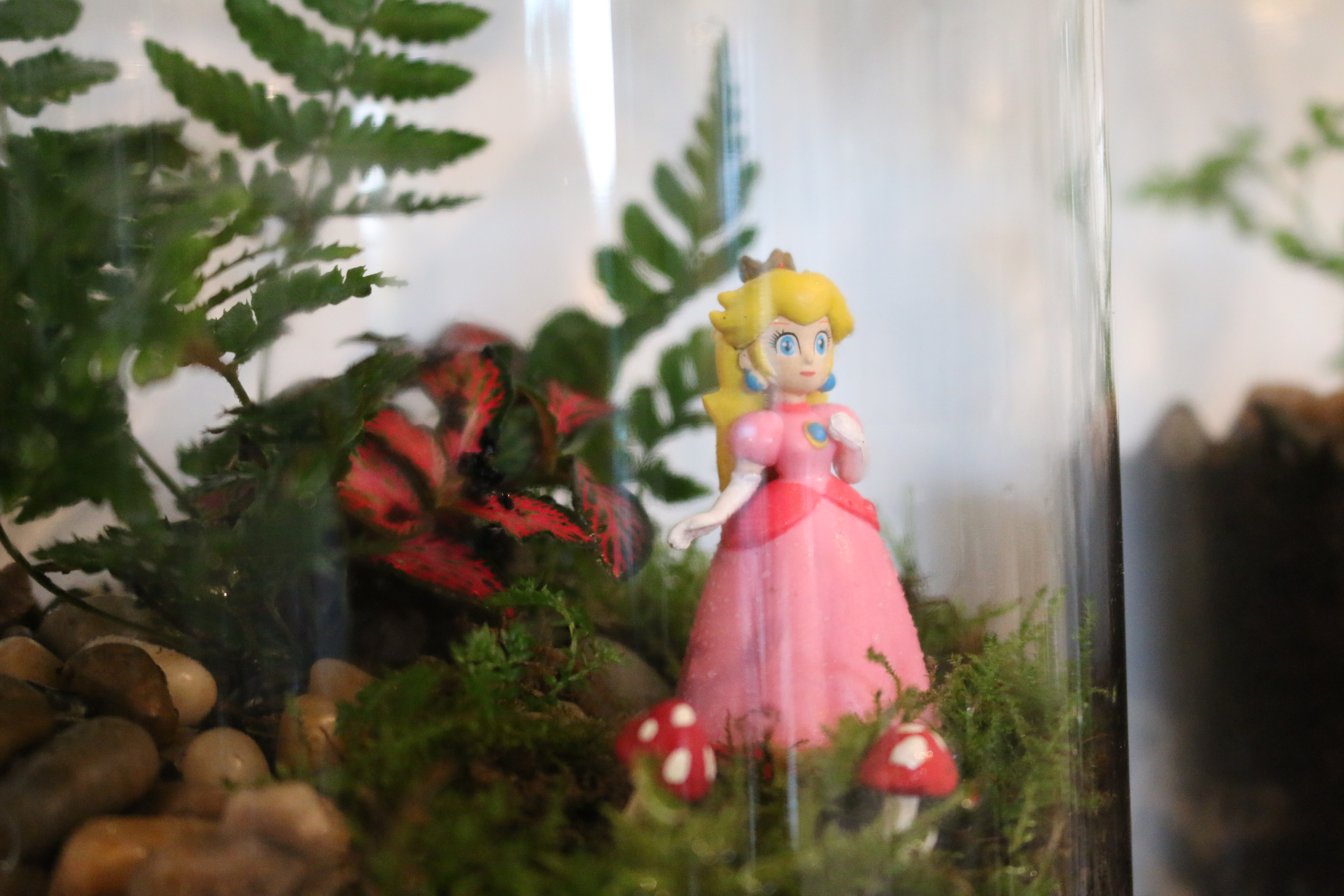 princess peach terrarium