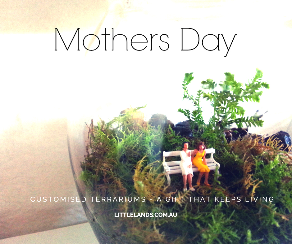 mothers day terrarium