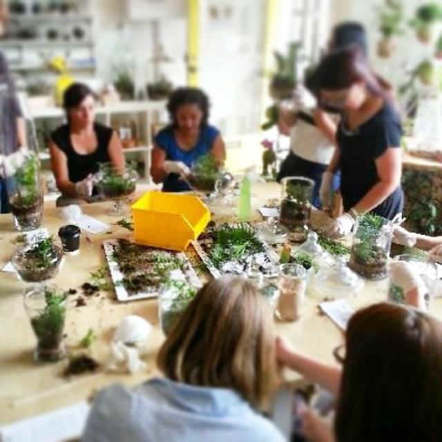 melbourne terrarium workshop