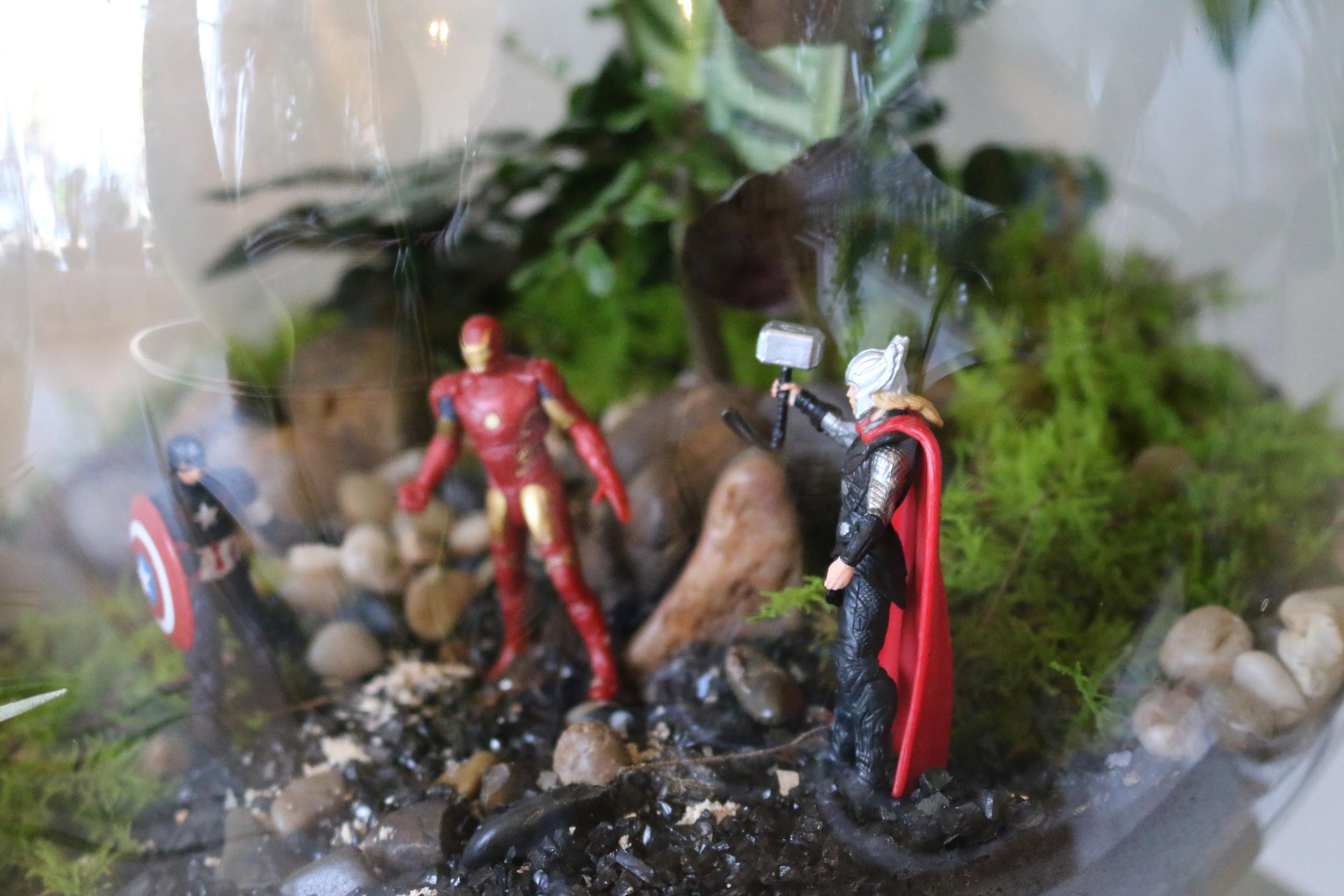 Avengers Terrarium