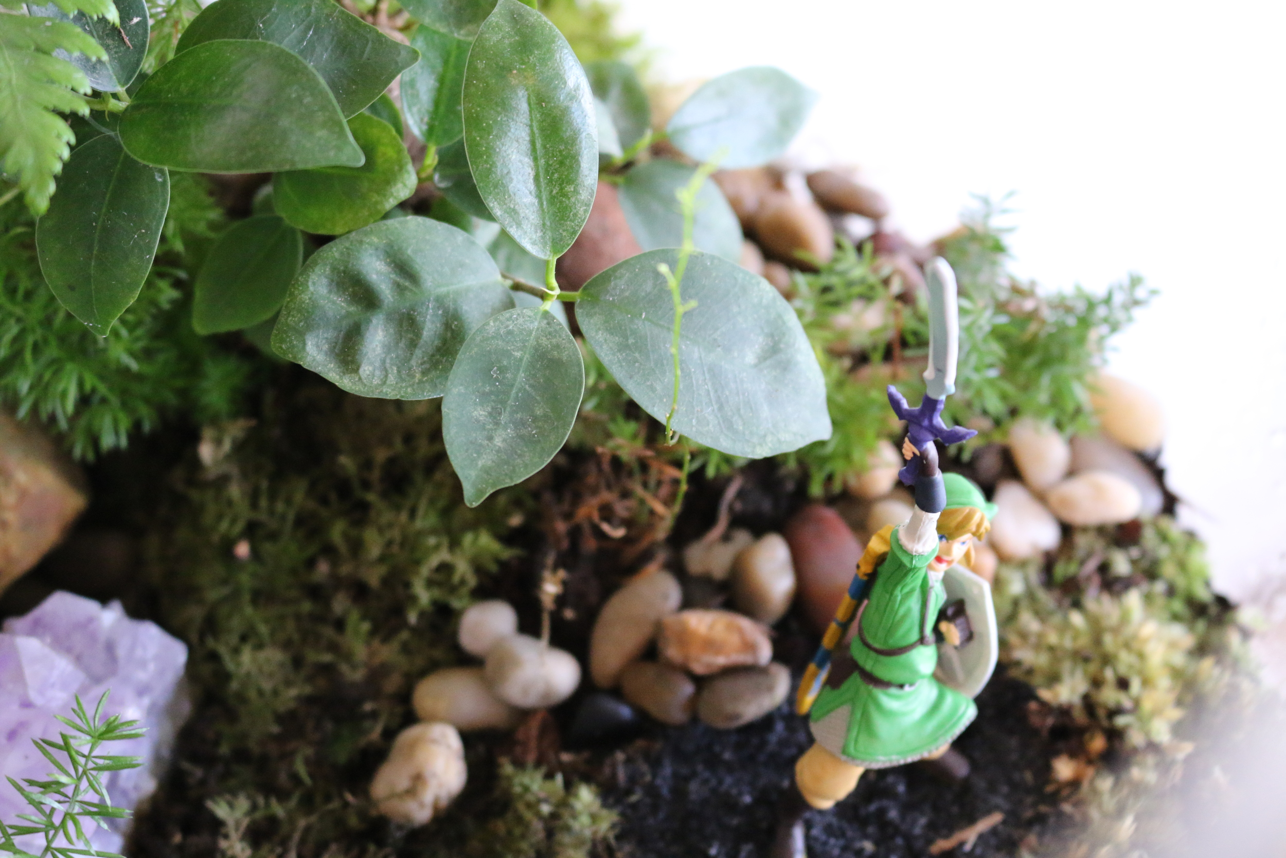 The Legend of Zelda Terrarium