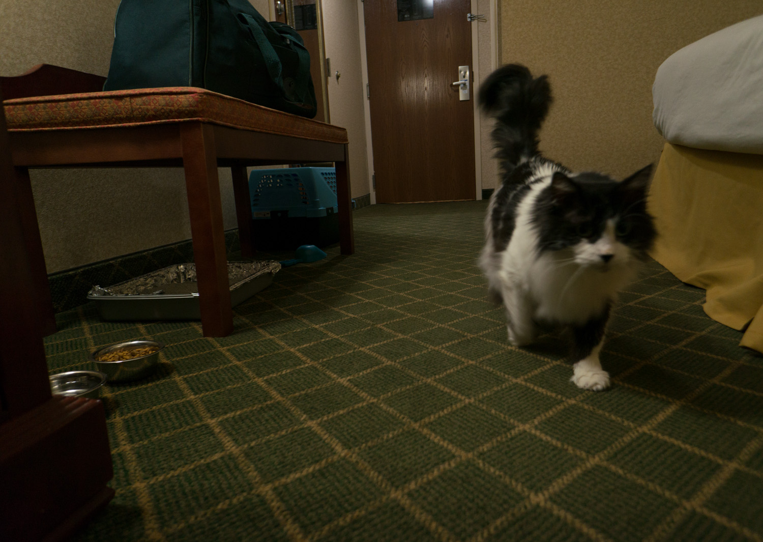 Cherie checking out the room during her first-ever hotel stay.