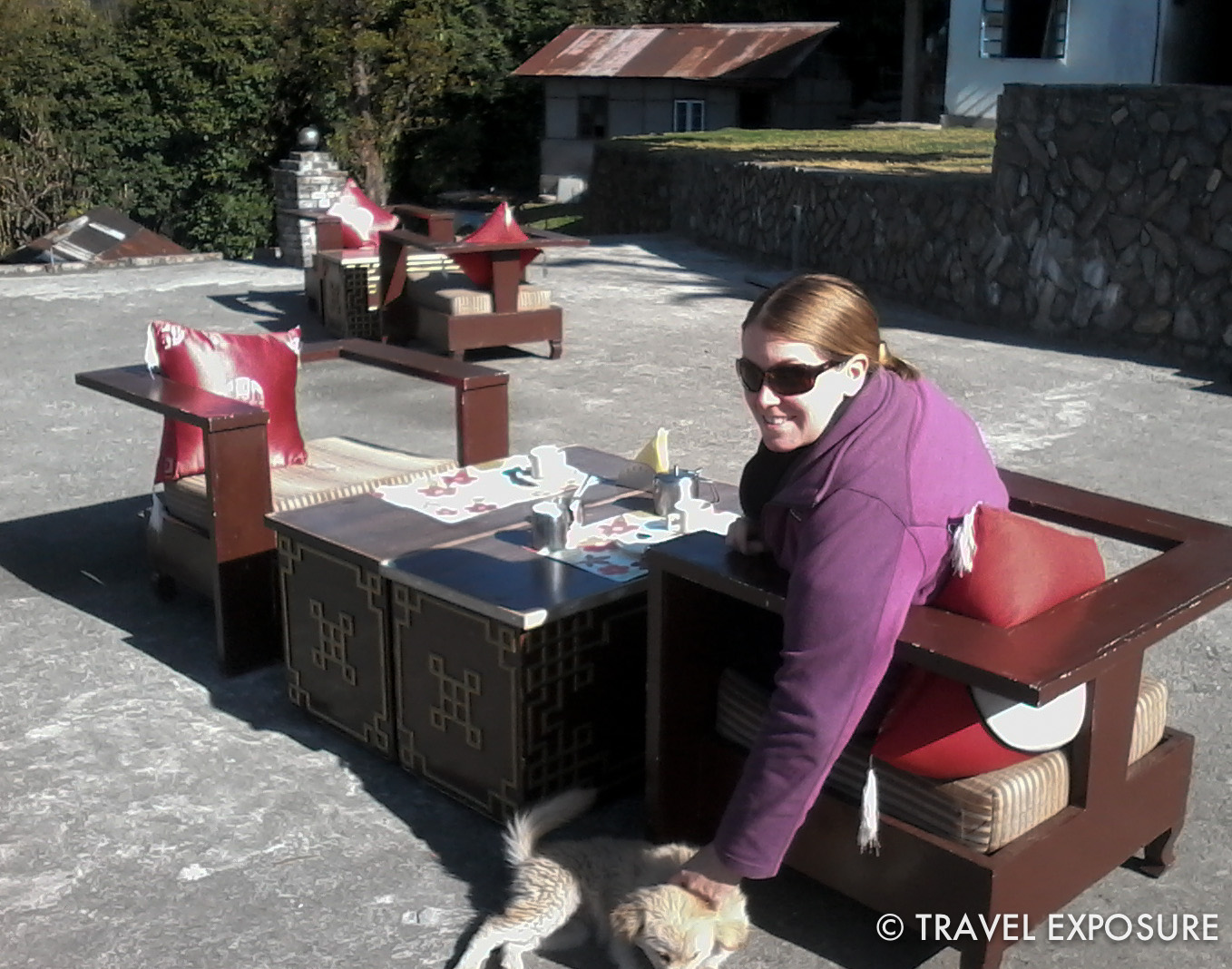 Puppy visiting during breakfast in Yuksom, Sikkim