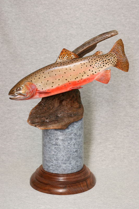 Second Best of Show Colorado greenback cutthroat