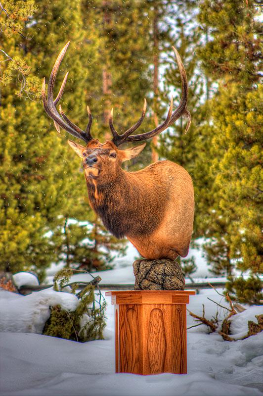 Pedestal elk