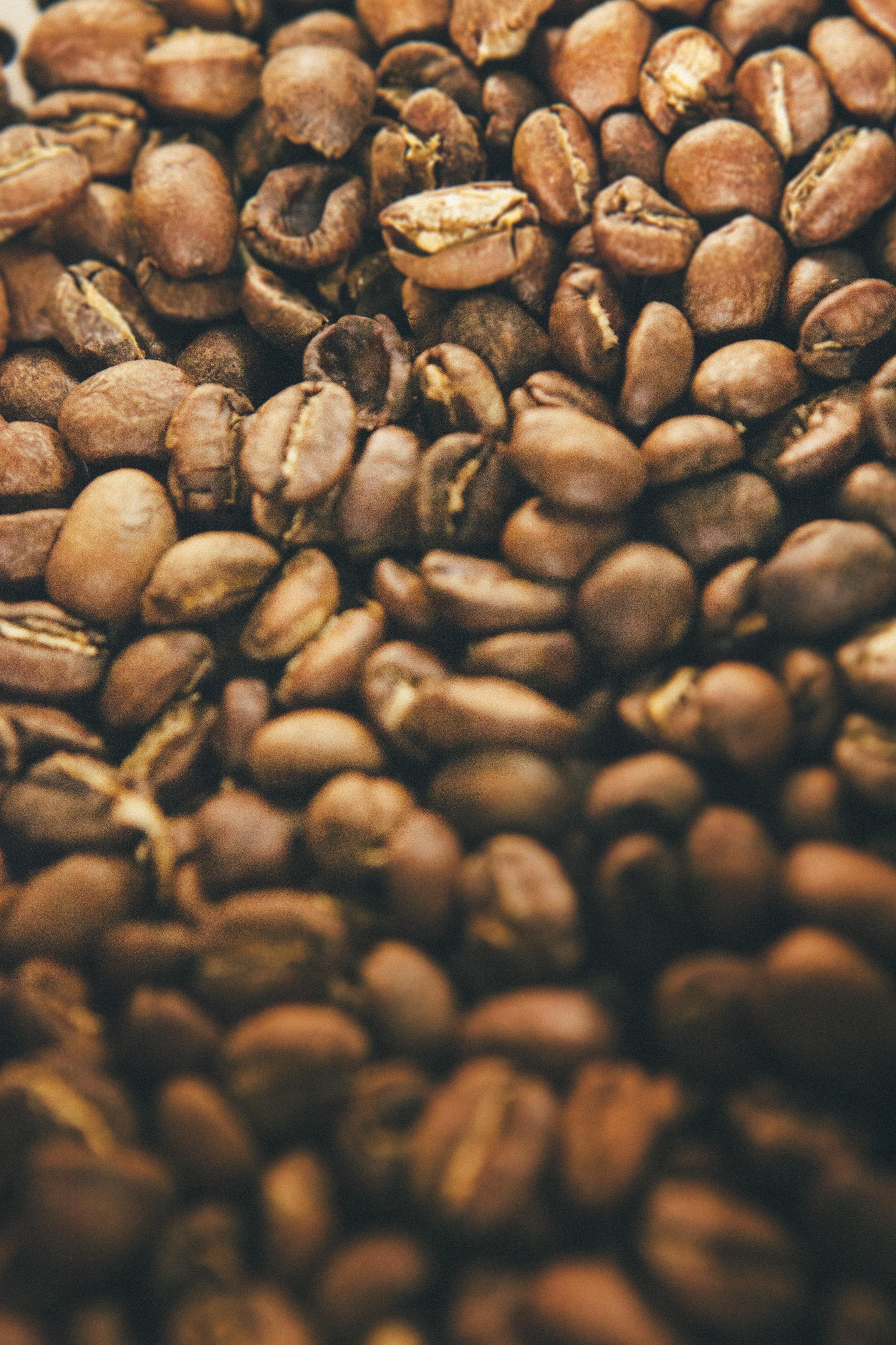 Josh Hannah-Ladies Gentlemen Coffee Rosters-0085.jpg