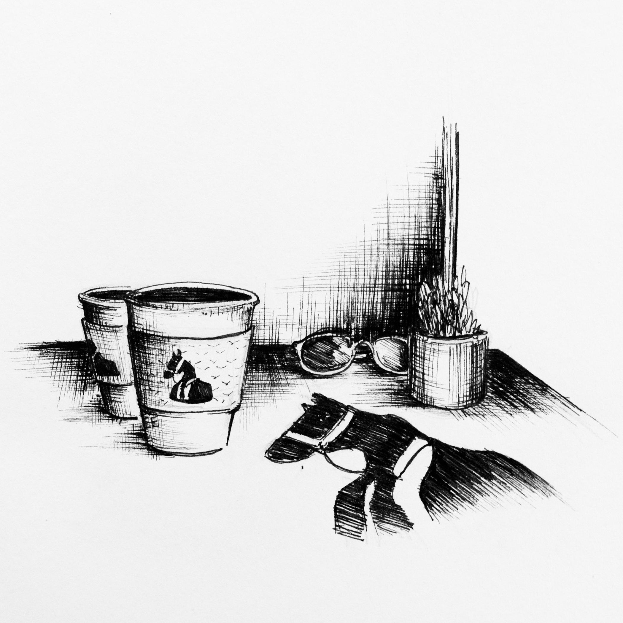 Dark Horse. Illustration by Mary Jhun Dandan.