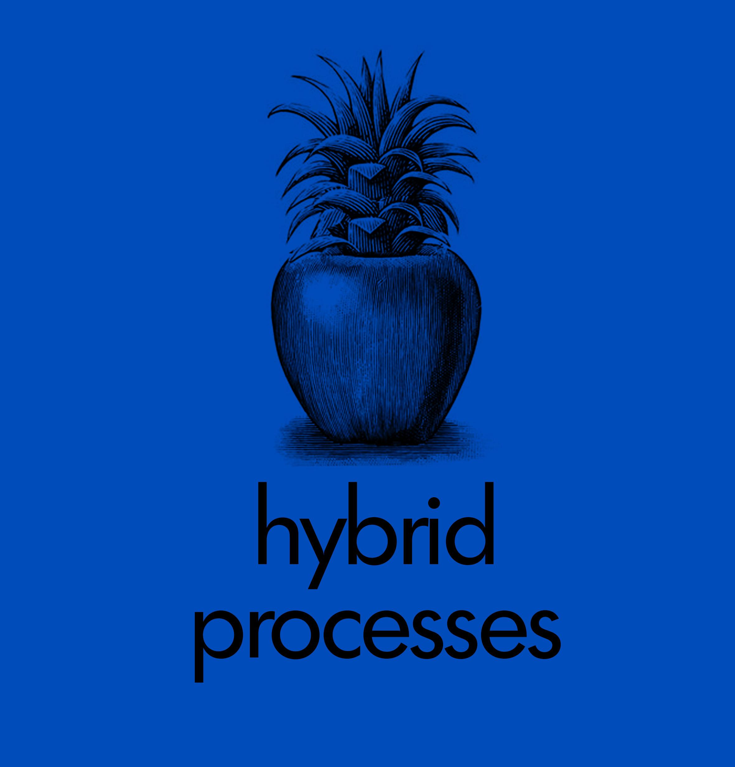 hybridprocessesN.jpg