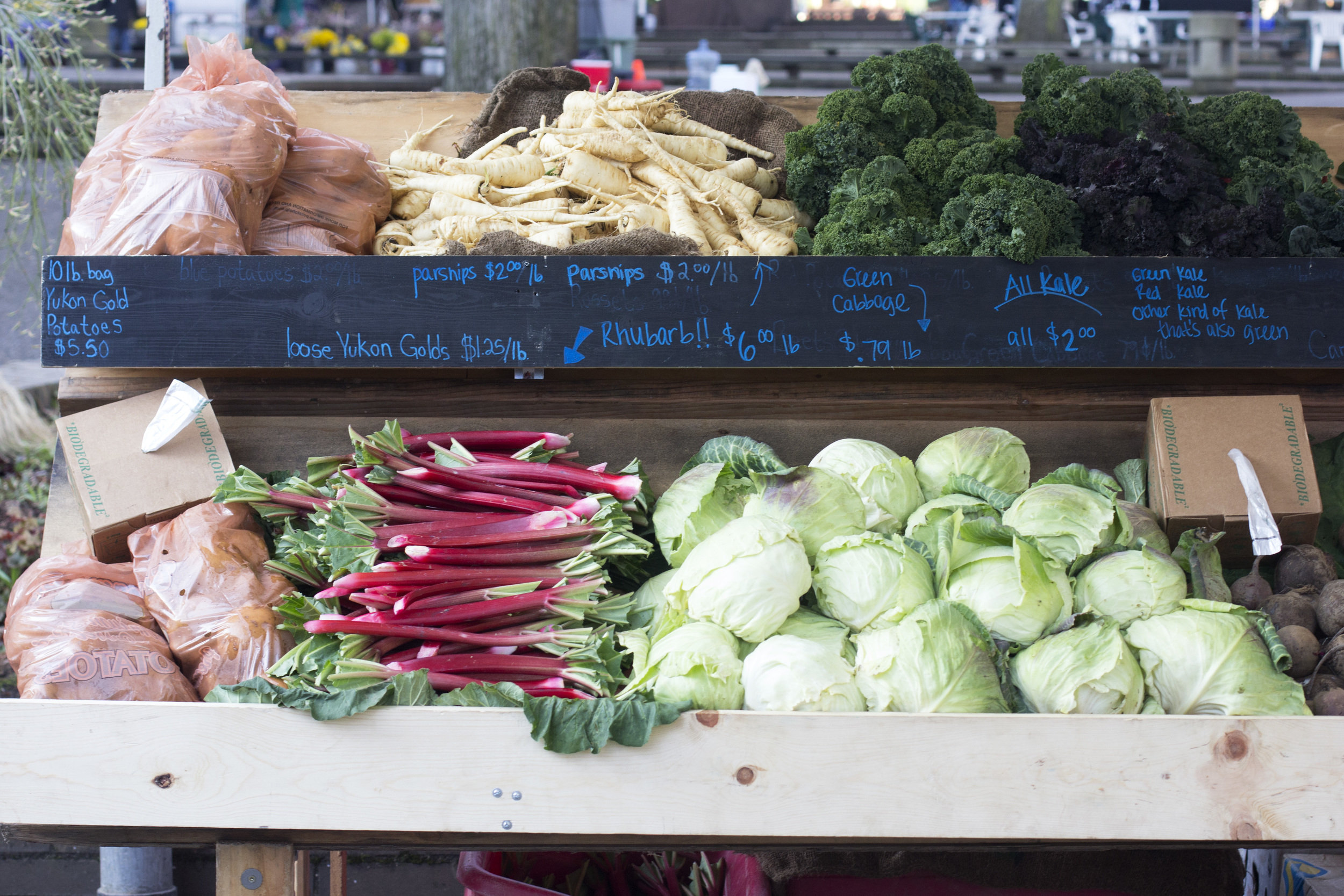 """This was the earliest rhubarb from a few weeks ago; it was down to $3/lb last Saturday. I like their """"other kind of kale that's also green"""" designation on the far right."""