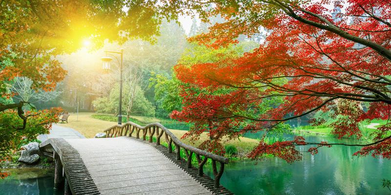 Peter Hoddle Bridge To Self Meditation