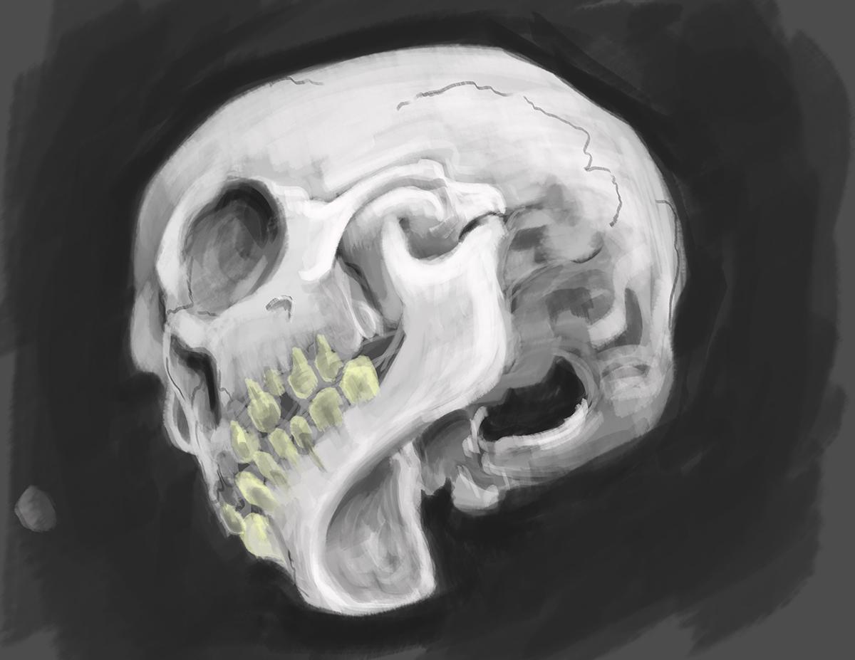Skull01_sv2.jpg