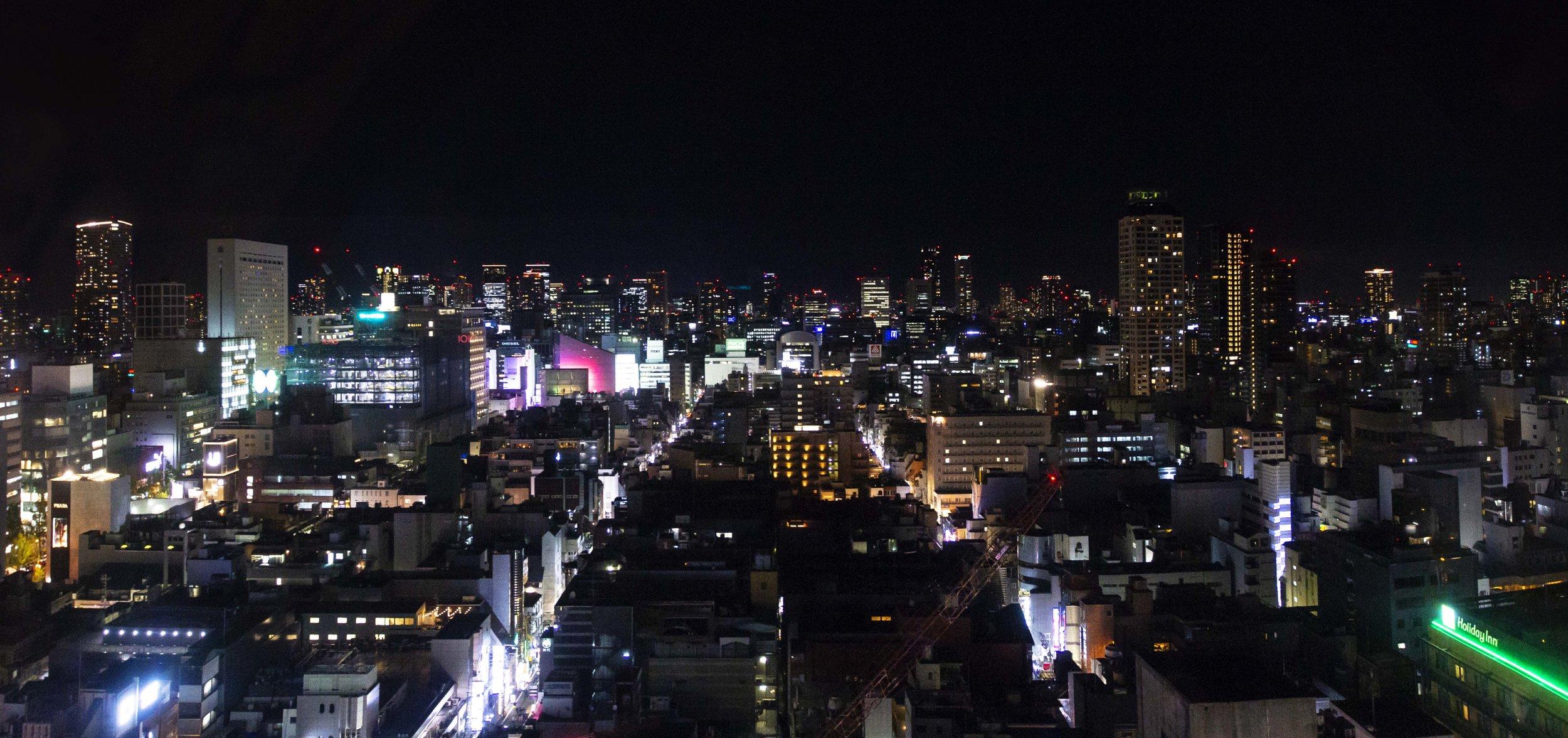 Osaka Skyline from the Ferris Wheel