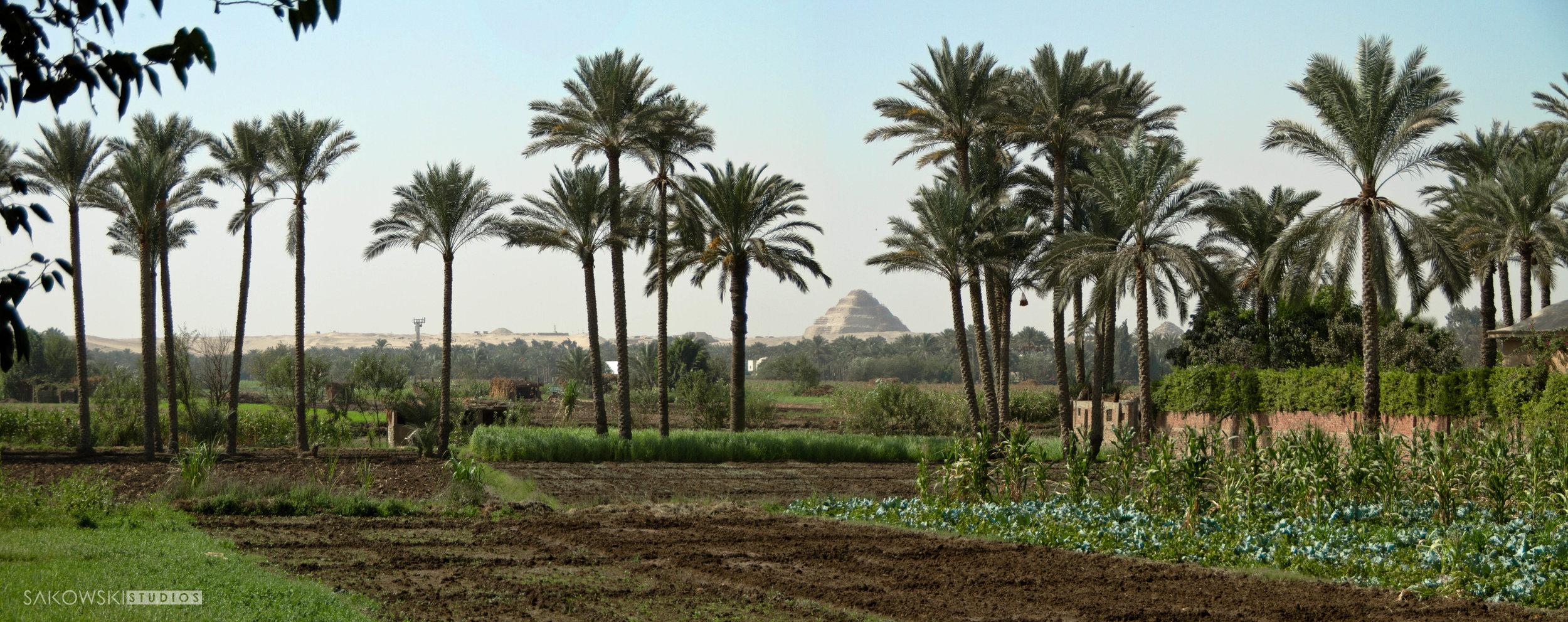 Sakowski_Egypt_05.jpg