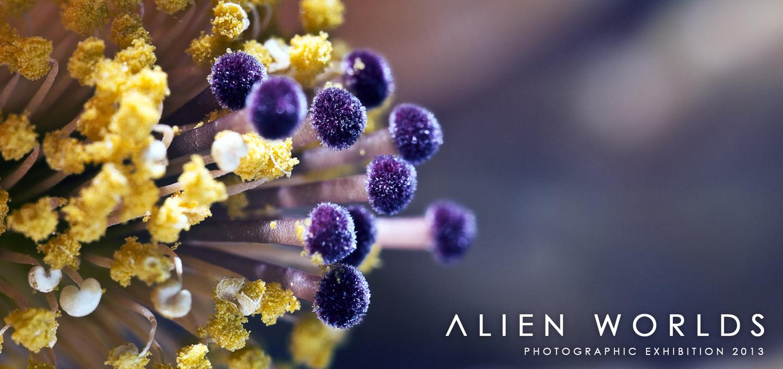 Alien+Worlds.jpg