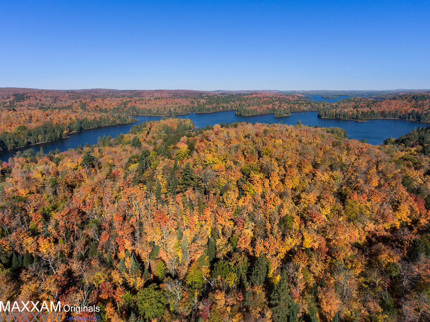 Algonquin Provincial Park from high above the trees in the autumn.