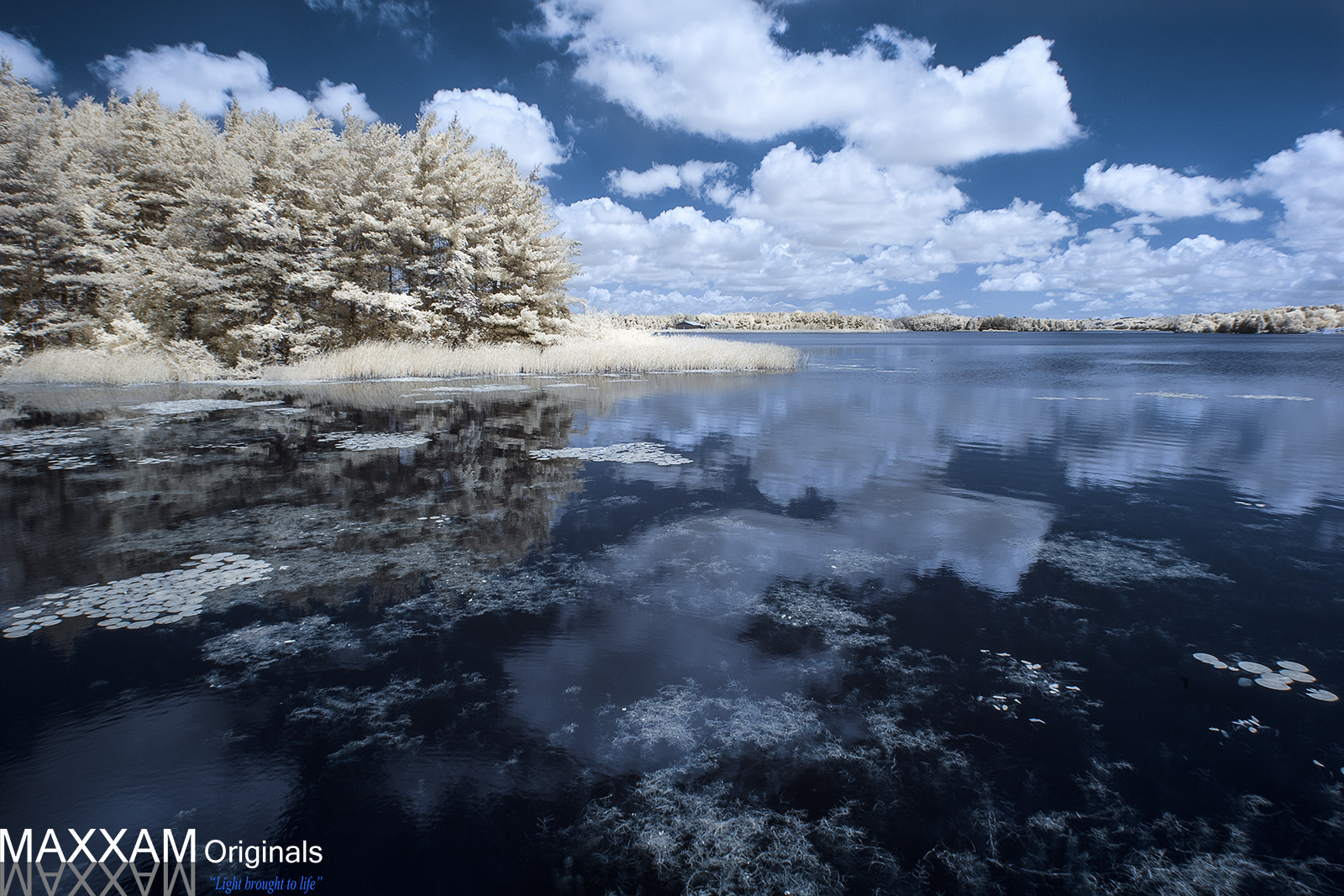ILake-Water.jpg