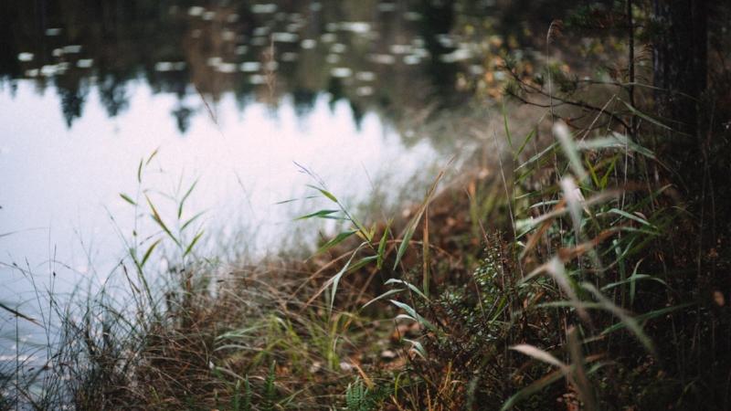 Hyvin hoidettu maaperä pidättää vettä ja estää ravinteita päätymästä vesistöihin ja Itämereen. Kuva: Joonas Ojala.