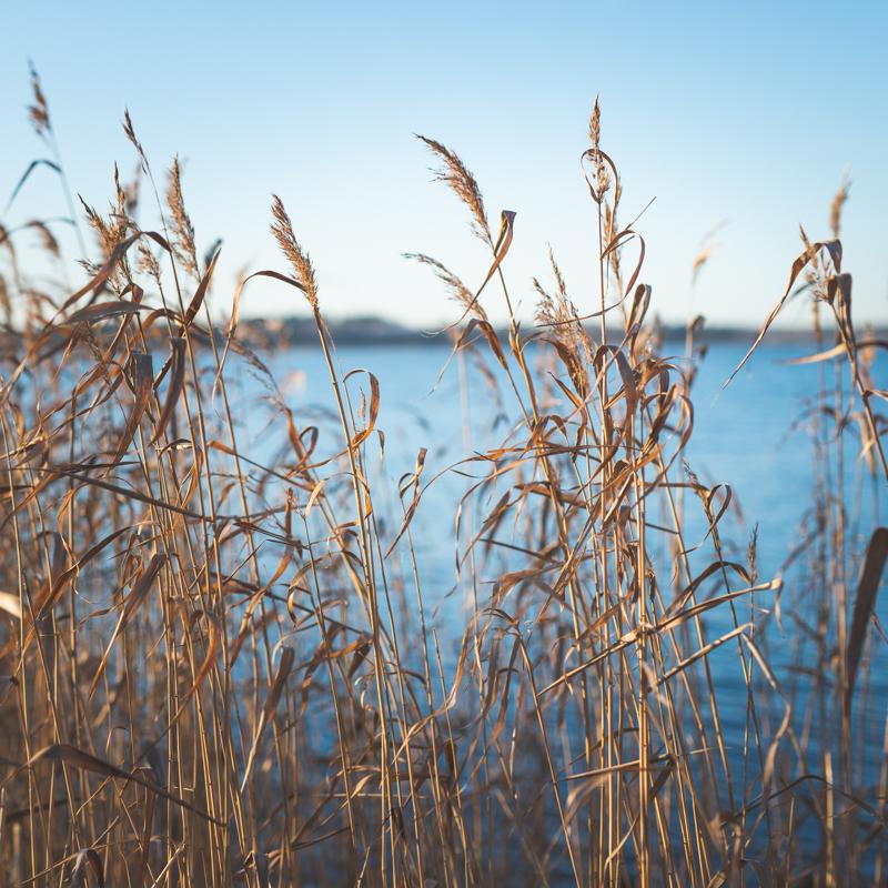 Itämeri.jpg