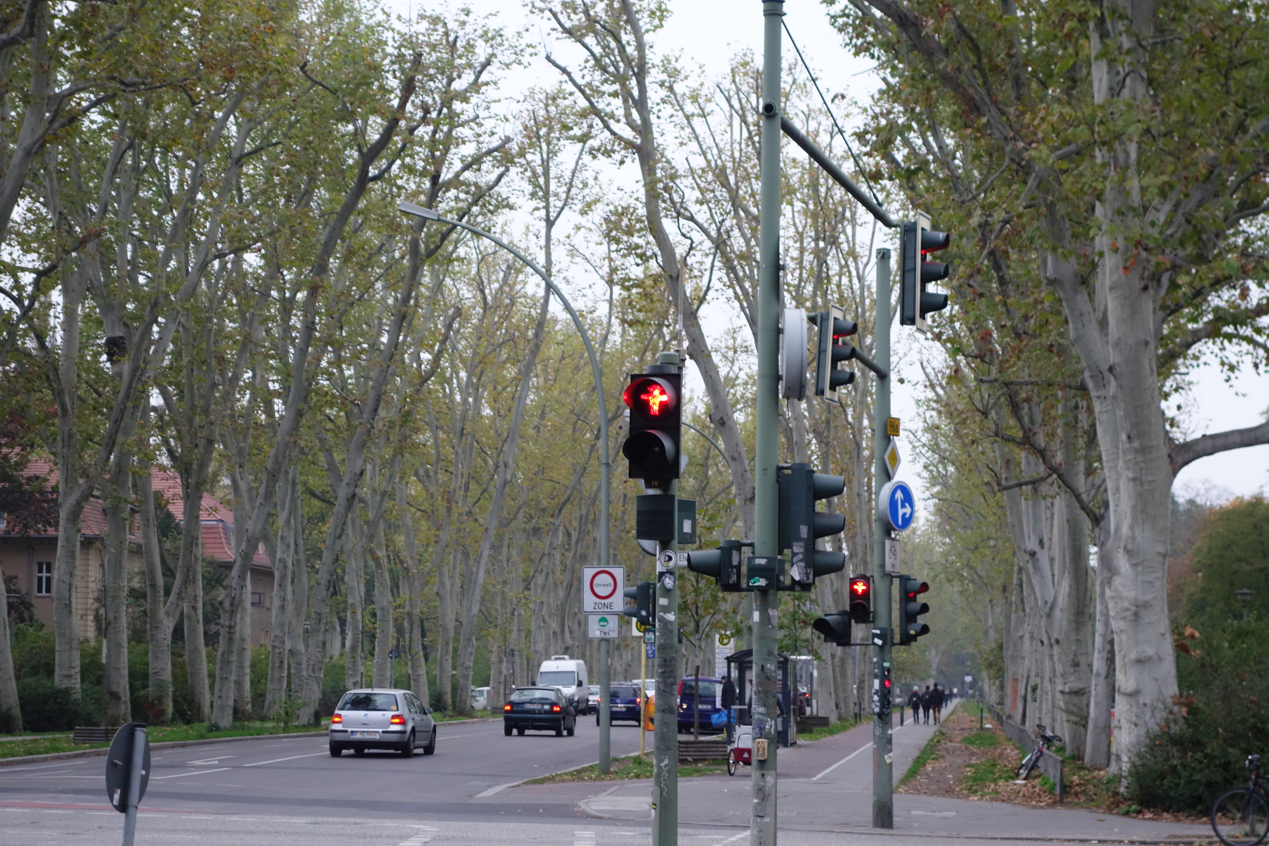 Peculiar trees in Treptow en route to Rumpsti Pumpsti.