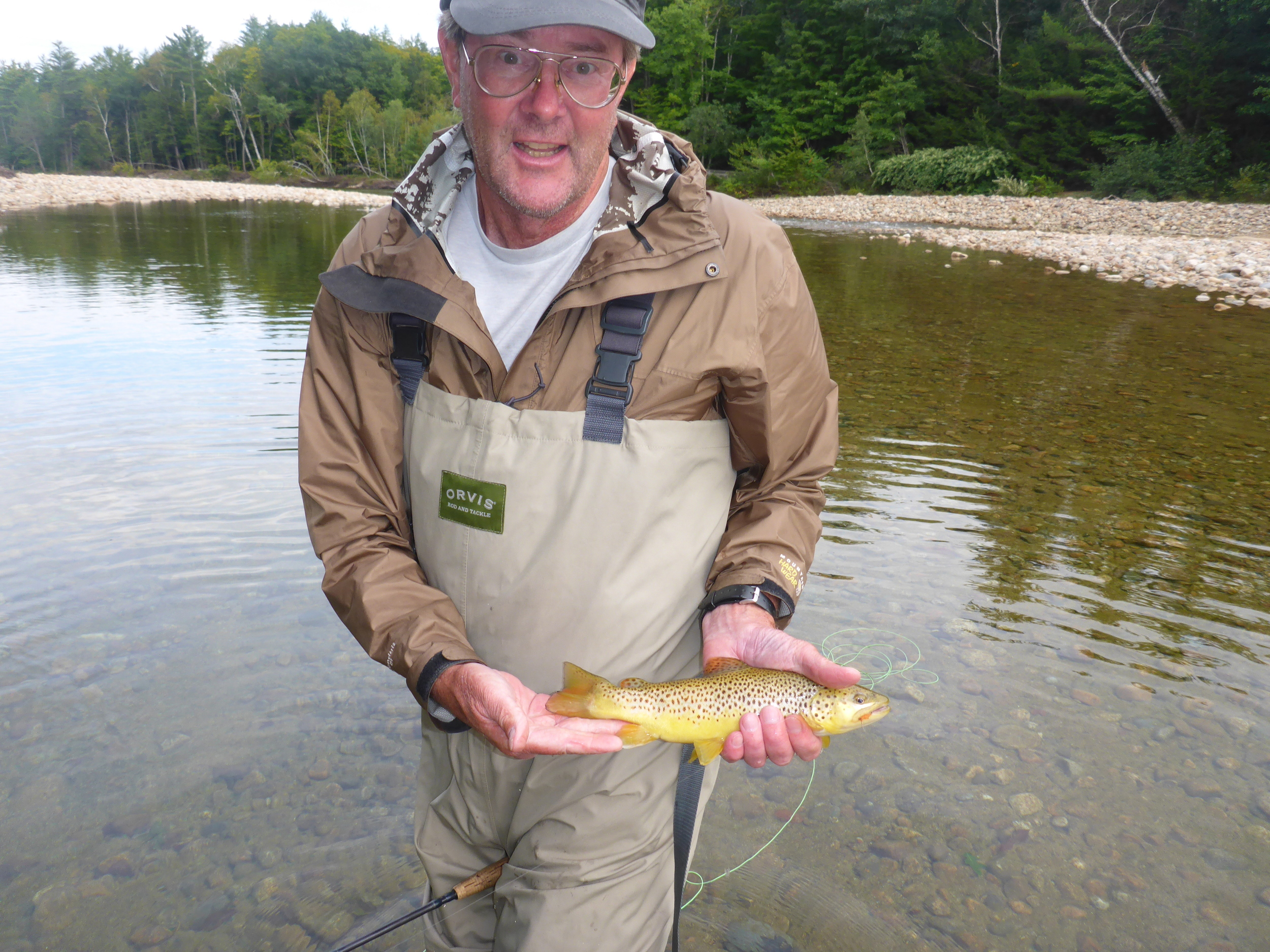 Dale with a golden Saco Brown.