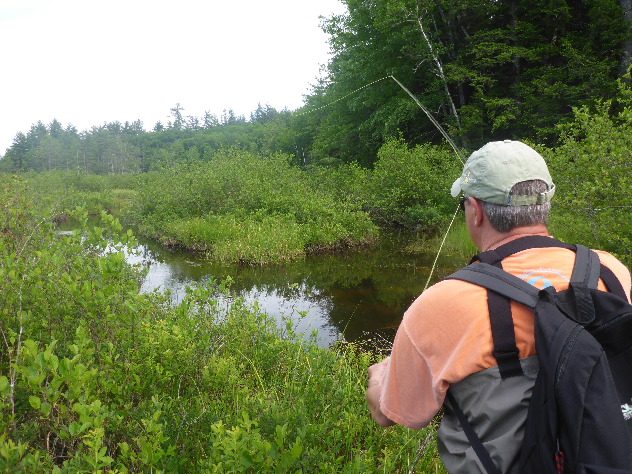 Mike Meller casting to rising wild brook trout.