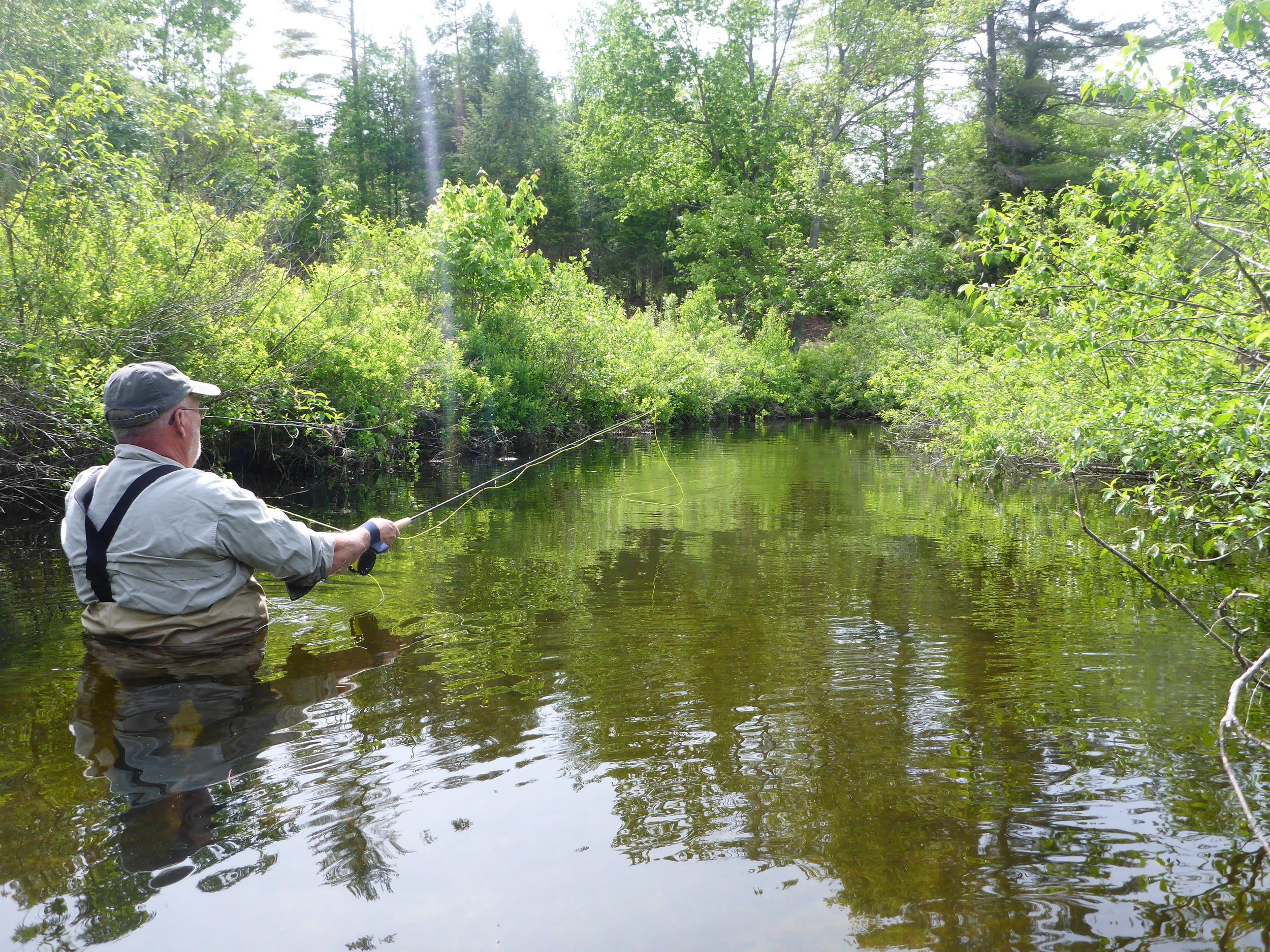Wading for spring creek brookies.
