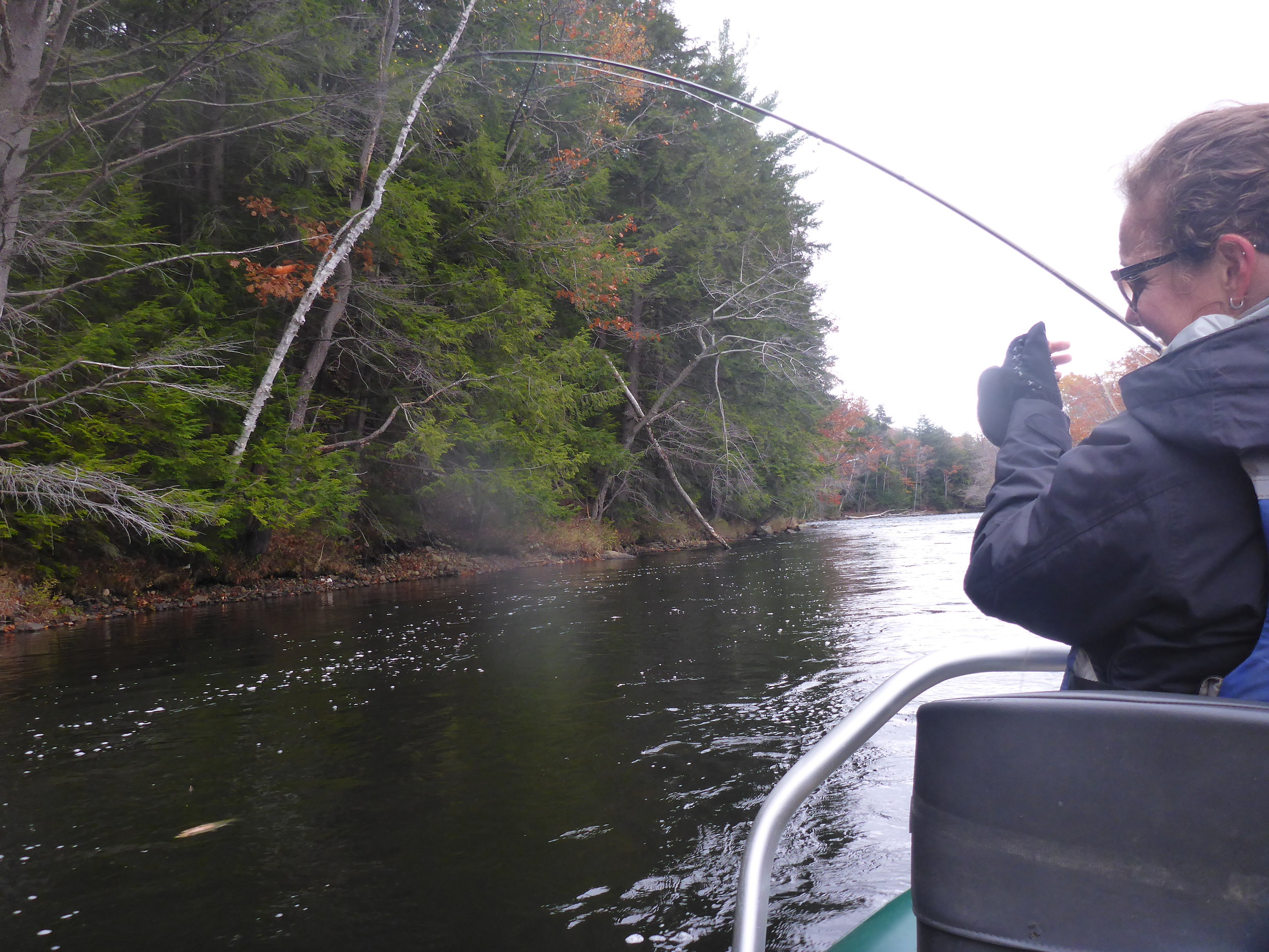 """Meredith's first day fly fishing. She landed 2 on a chartreuse egg and 2 on the """"Jumping Jack Flash"""""""