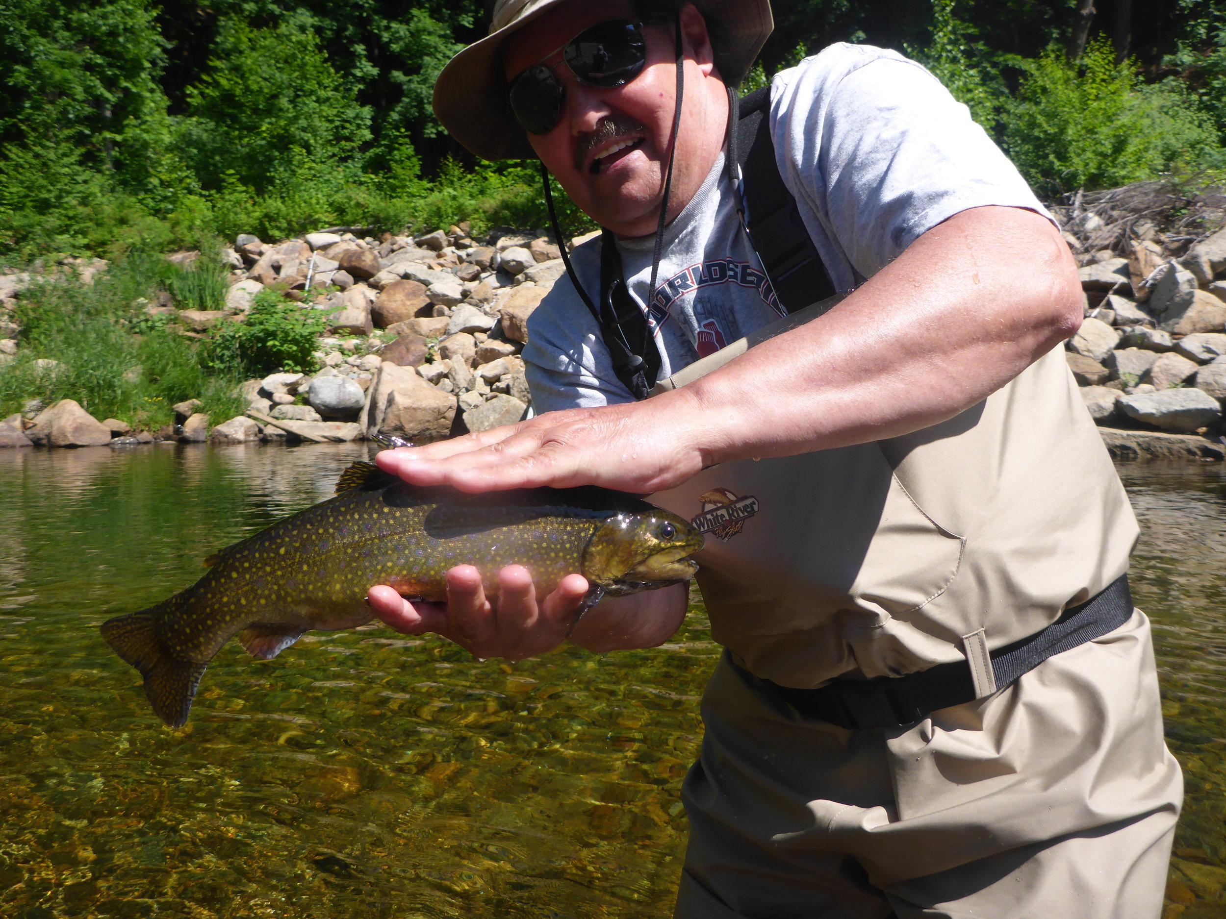 Ellis River Brook trout Late June 2016.