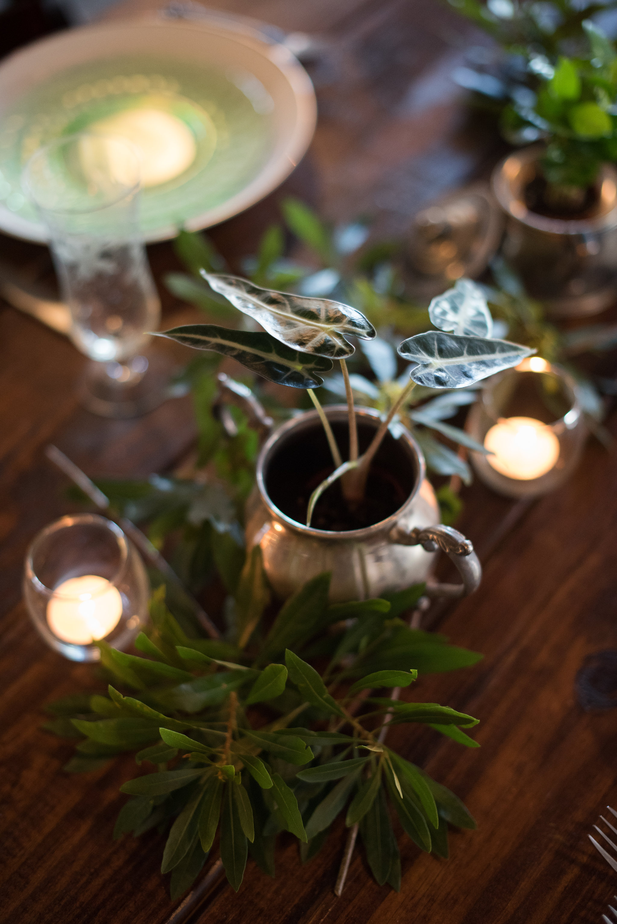 st-augustine-wedding-parlor-room-events-sarah-annay-photography.jpg