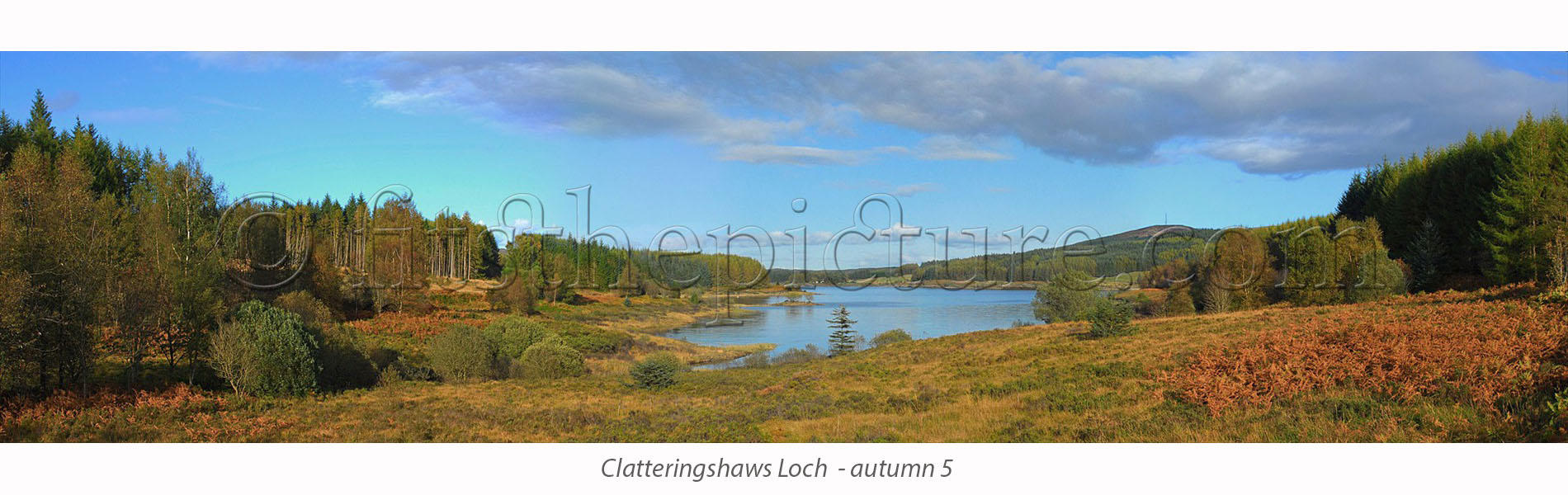clatteringshaws_autumn_5.jpg