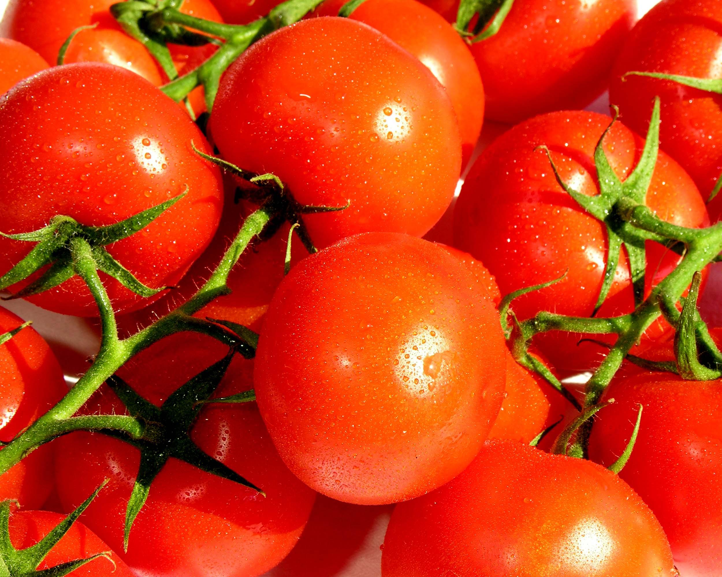 Z tomatoes 1.jpg
