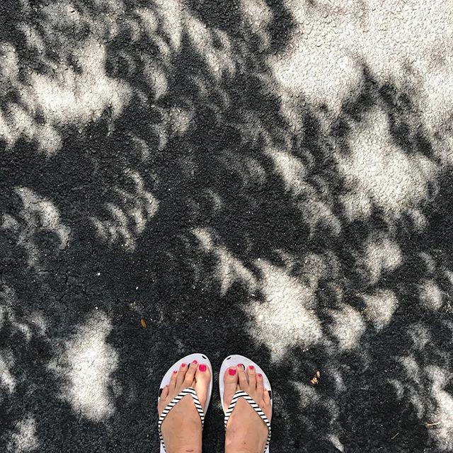 🌙 #eclipse2017