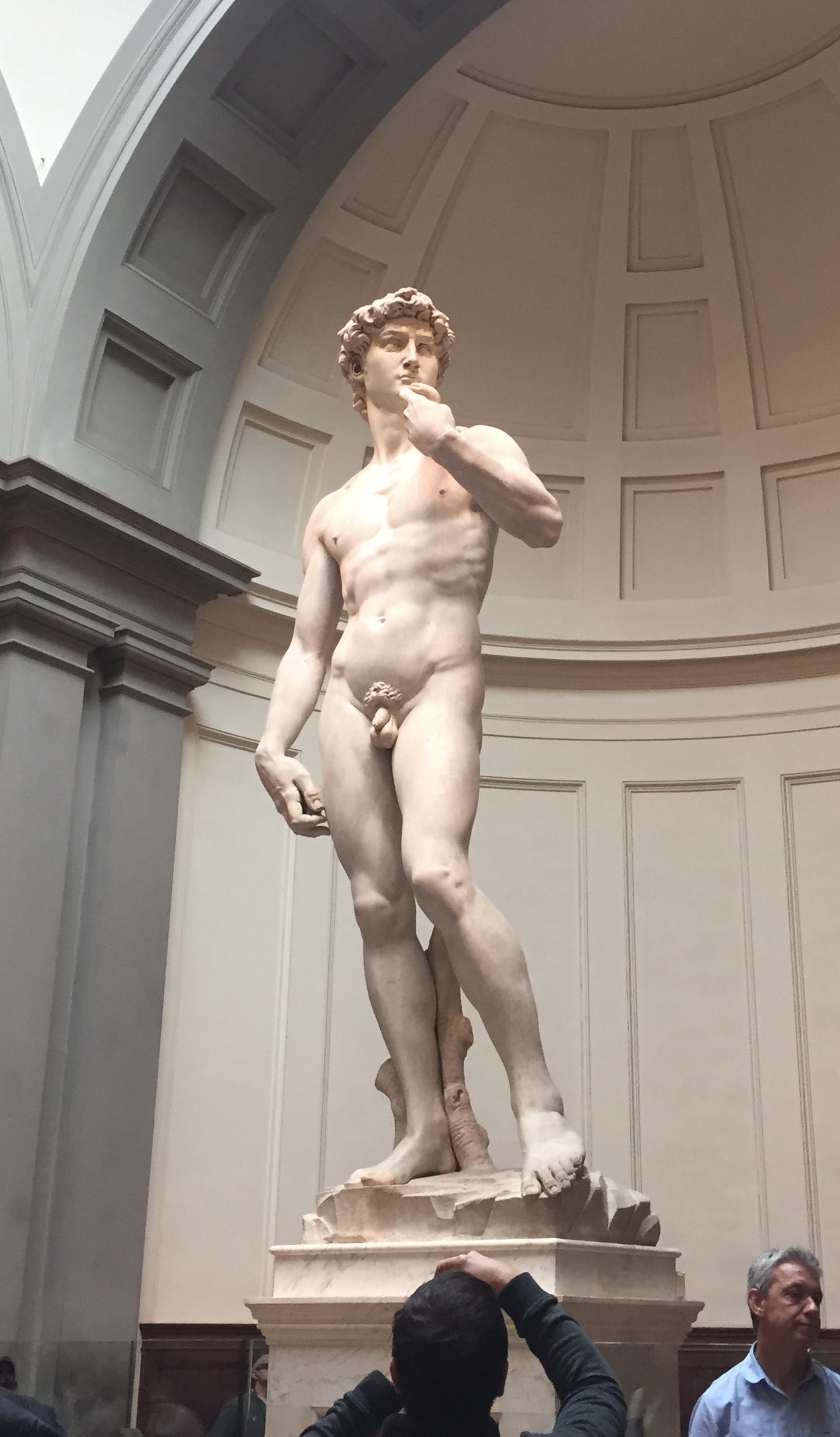 Michelangelo, David, 1501-1504, Marble