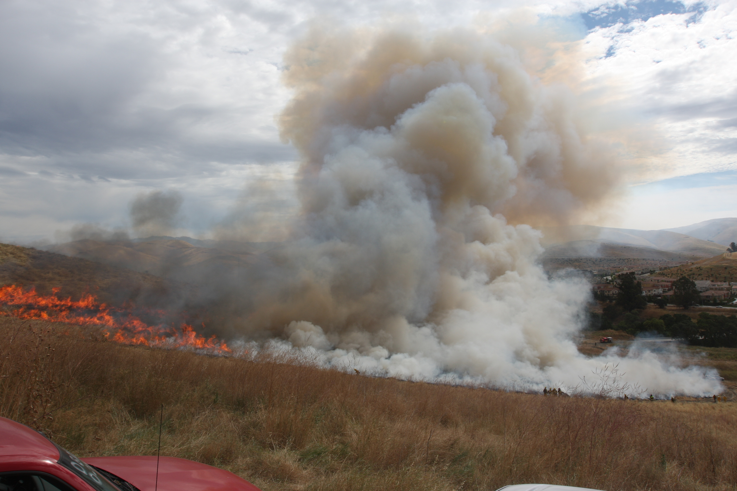 Prescribed fire experiment at camp parks, Ca July 2010. Ignition by Marin County fire crew.