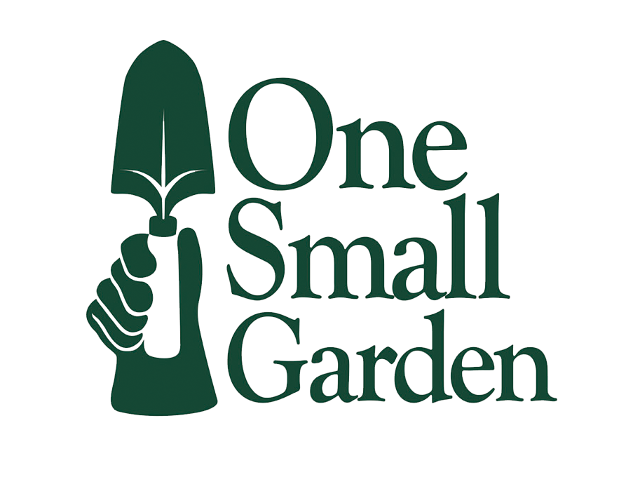 One_Small_Logo_No_Back.png