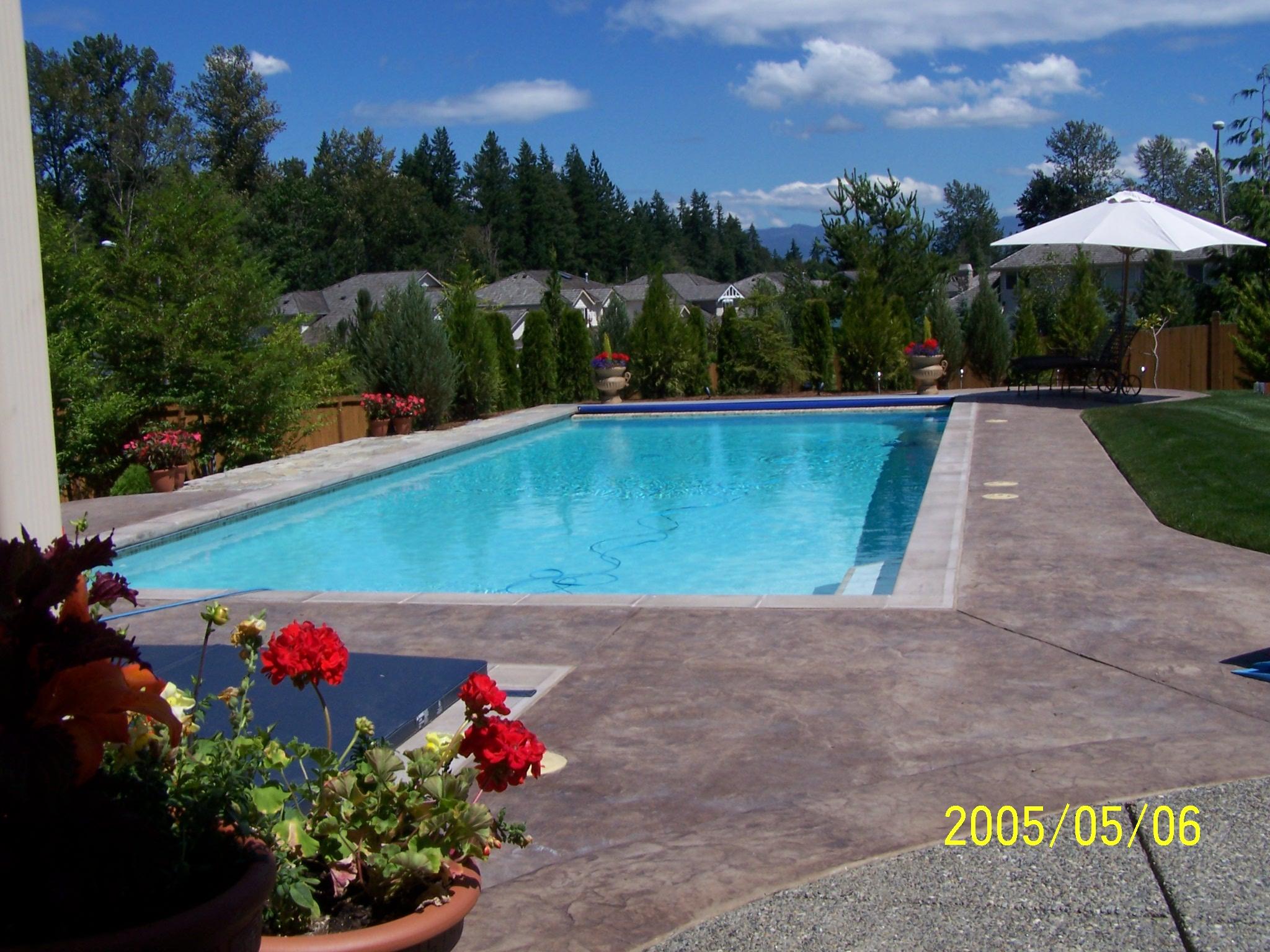 Finished Backyard Pool and Spa