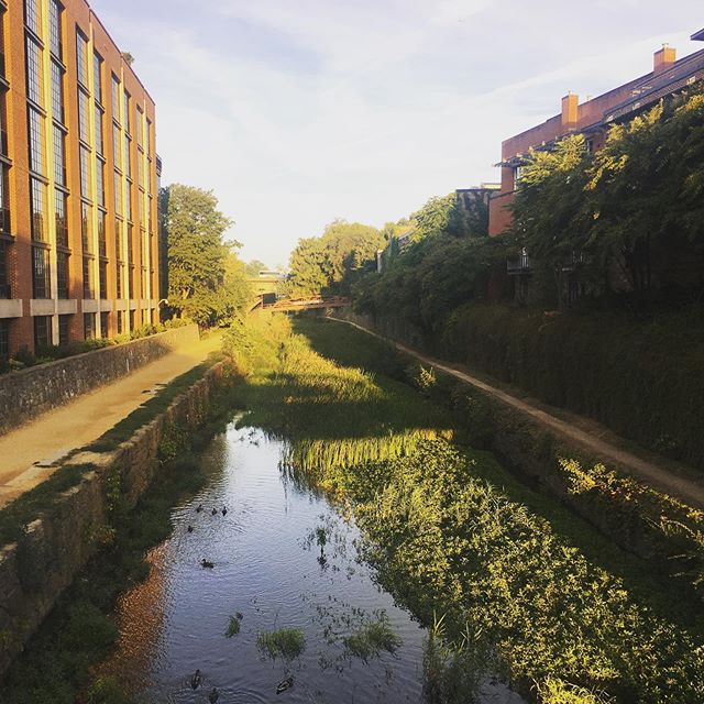 She didn't wake up like this... . . . The C&O Canal needs some regular TLC to stay so beautiful. Join us tomorrow from 10am - 12pm for our monthly Canal Clean-Up! We'll meet at Fishmarket Square (3255 Grace St NW), and would love to see you there. #candocanal #georgetownheritage #georgetowndc #nps #findyourpark