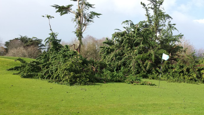 Just some of the damage at Limerick Golf Club.