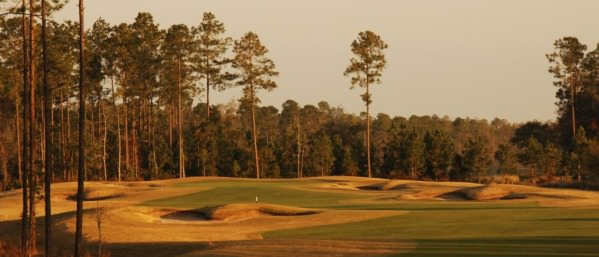 St John's Golf & Country Club  in St Augustine.