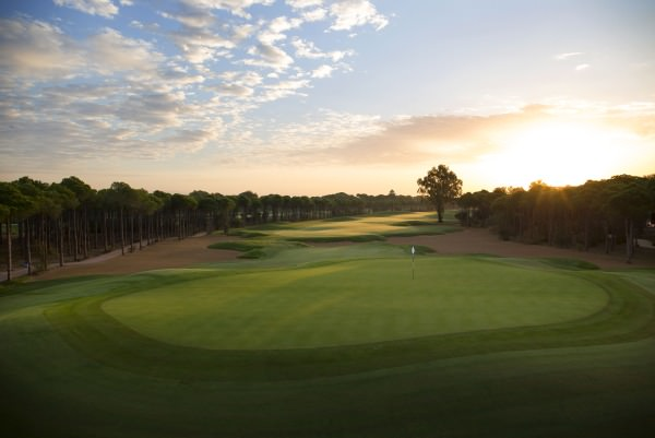 The tree-lined Montgomerie Maxx Royal Golf Club.Credit: Kevin Murray / kevinmurraygolfphotography.com