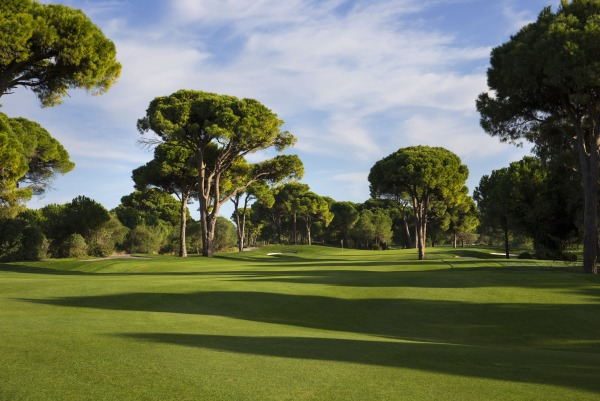 The Montgomerie Maxx Royal. Credit: Kevin Murray / kevinmurraygolfphotography.com