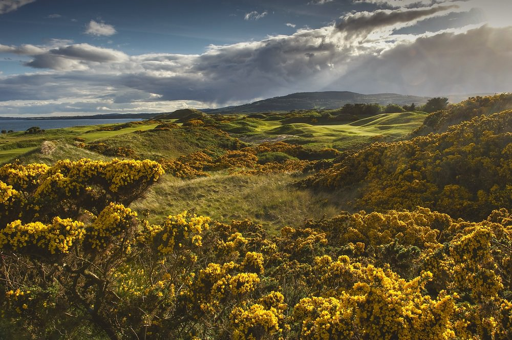 The 17th at The European Club.Picture © Pat Ruddy