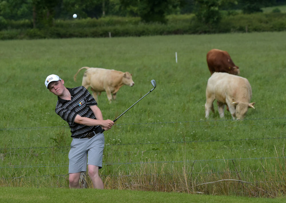 2016 Leinster Youths Amateur Open Championship at Esker Hills Go